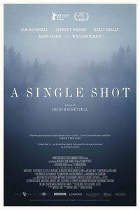 A Single Shot (September 2013)